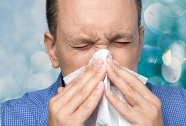 gripi 1