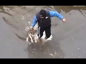 Βούτηξε στα Παγωμένα Νερά για να Σώσει το Σκύλο που Πνίγονταν. Μόλις δείτε ΠΩΣ του το ανταπέδωσε, θα δακρύσετε.