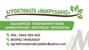 makridakis-agroktimata