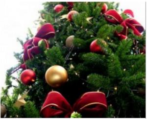 christmas_tree_sxc_hu-350x280-jpg