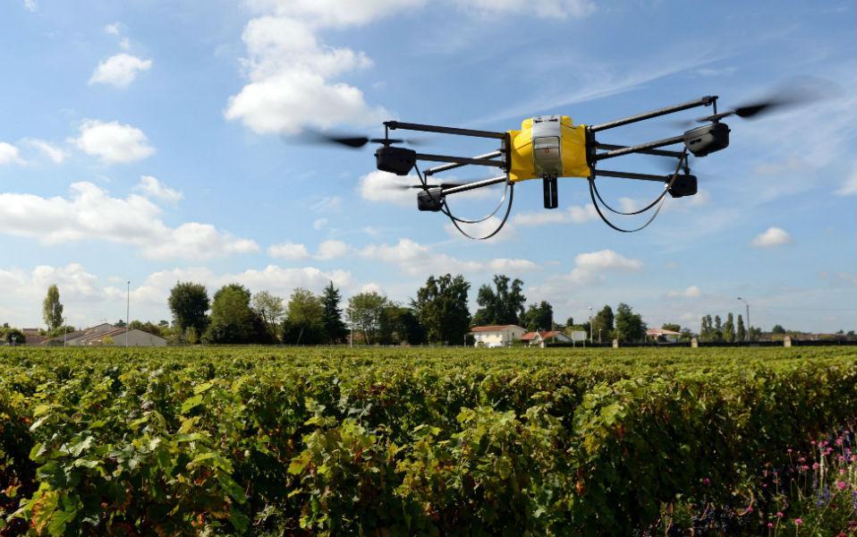 drone-ampelia