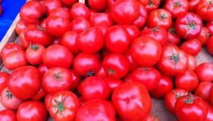tomates10