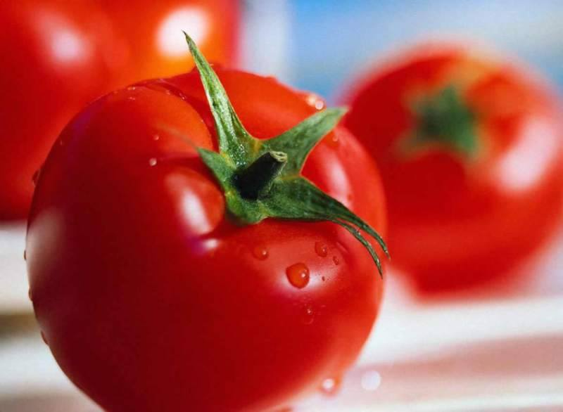 tomates15