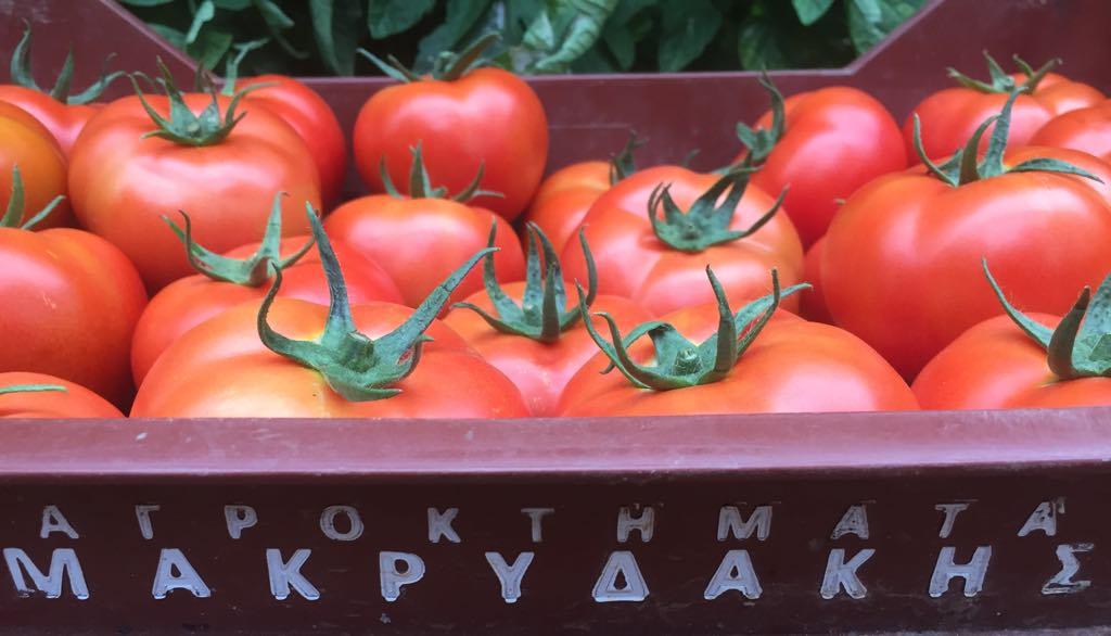 tomates agroktimata makridakis